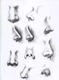 eyebrow shading drawing. tutorial how to shade and draw realistic noses eyebrow shading drawing