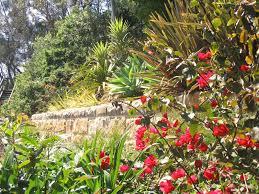Small Picture best tropical garden design Margarite gardens