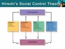 social disorganization theory essay sample problem solving social disorganization theory essay
