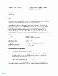 Resume Format Guidelines Current Resume Format Examples Magnificent Trends Australia