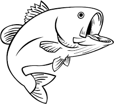 bass fish coloring pages. Beautiful Coloring Fishing Fun Bass Fish Coloring Pages Best Place To Color Inside S