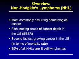 Toward An Optimal Management Of Non Hodgkins Lymphoma