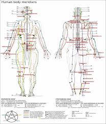 Shiatsu Tsubo Chart Chart Of Major Meridian Lines Massage Massage Technique