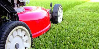 Lawn Care Industry Statistics Curated By Lawnstarter