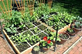 4x8 raised bed vegetable garden layout.  Garden What To Plant In A 4x8 Raised Vegetable Garden 4u20148 Bed Ve Able With Layout