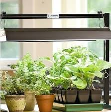 apartment herb garden. Apartment Herb Garden Kit Startling Indoor With Light Remarkable Design 5 Kits For Any Gardenscapes