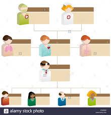 A 3d Diverse Healthcare Organizational Chart Stock Photo