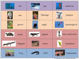 Primary Inspiration Free Animal Classes Reference Chart