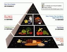 Food Pyramid Project Food Pyramid Nutrition Wikipedia