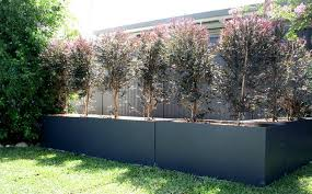 cement planter boxes for sale. Fine For See Our Range Of Planter Sizes For Cement Boxes Sale O