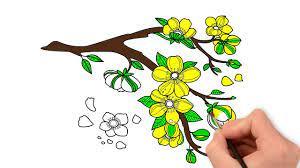 Vẽ Và Tô Màu Hoa Mai - Tranh Tô Màu Các Loài Hoa - Vẽ Cành Hoa Mai Vàng    Tổng hợp những bức tranh đẹp nhất