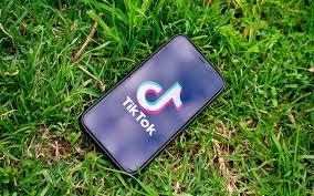 Free Tiktok Followers | Tiktok Fans Generator