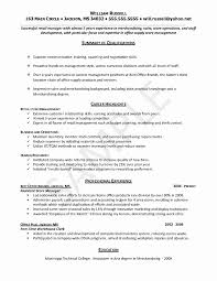 Entry Level Resume Template New Entry Level Job Resume Templates