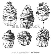 vintage cupcakes drawing. Perfect Cupcakes Hand Drawn Cupcakes Set Of Vintage Food Sketches Isolated On White  Background Vector To Vintage Cupcakes Drawing
