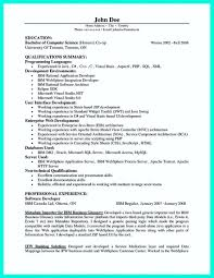 Professional Programmer Resume Template 20 Computer | Mhidglobal.org