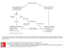 Flow Chart That Summarizes The Current Management Of Acute