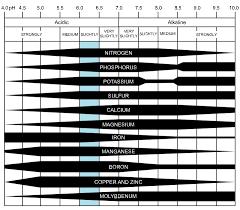 Vegetable Garden Fertilizer Chart Preparing Soil For Planting N P K Soil Ph Soil Amendments