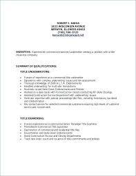 Resume Headline Examples Good Resume Headline Examples Kadil Carpentersdaughter Co