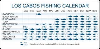 Fishing Cabo San Lucas Villas