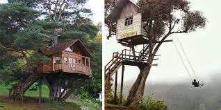 Image Jungle Sortra 36 Amazing Dream Tree Houses