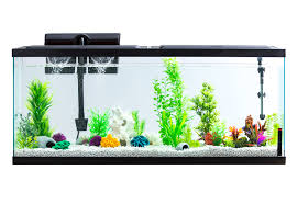 Aqua Culture 55-Gallon <b>Fish Tank</b> LED <b>Aquarium</b> Kit (Online Only ...