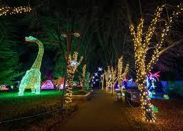 Boo Lights 2017 River Of Lights Raises 700k For Biopark Albuquerque Journal