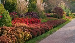 photo credit longwood gardens
