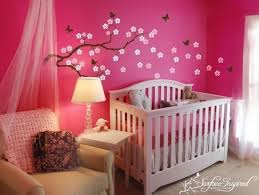Newborn Baby Girl Bedroom Ideas And Is About Girls Baby Nursery Ideasbaby Room  Decorating Ideas Baby Girl