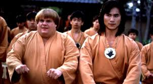 Image result for beverly hills ninja