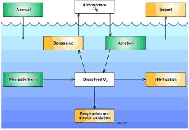 Dissolved Oxygen Diagram Wiring Diagrams