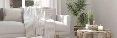 Gut Aufgestellt Zimmerpflanzen Für Alle Standorte