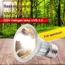 Full Spectrum Halogen Lights Us 4 15 32 Off 25 50 75w Uva Uvb 3 0 Reptile Halogen Lamp Bulb Turtle Tortoise Basking Lamp Amphibians Lizards E27 Heating Light Full Spectrum In