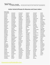 Adjectives For A Resume Free Beautiful Adjectives For Resumes Resume