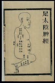 Acu Org Chart File Acu Moxa Chart Spleen Channel Of Foot Taiyin Chinese