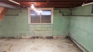 Basement Mold Removal Finding Mold Removal PreventionMold In Basement