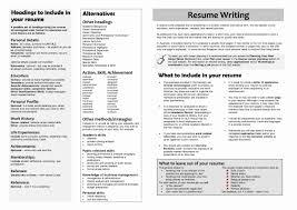 Sample Of Resume In Australia Sample Australian Resume Format Fresh Sample Resume Financial 16