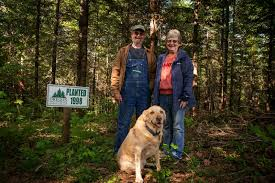 Pamplin Media Group - Small woodland owners play big role in ...