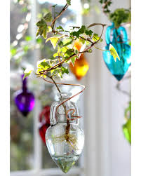 our clear spiral hanging water garden plant rooter has a beautiful distinctive shaped vase the spiral shape and clear glass look spectacular in any