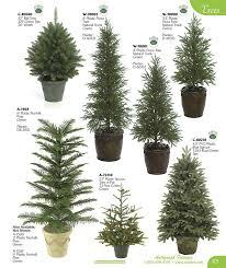 Evergreen Tree Chart Backyard Trees Evergreen Garden