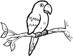 Small Picture Parrot coloring page Animals Town Free Parrot color sheet