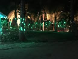 camping in the woods at night. Https://www.eventshigh.com/detail/bangalore/a25b8d9129c3c7b86edf91b57c2ea59b-new-year- Camping-in-woods Camping In The Woods At Night D