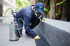 Image result for san antonio pest control