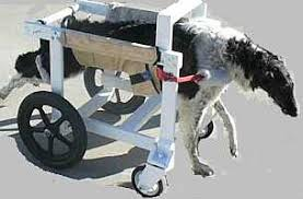 dog wheelchair plans make build dog