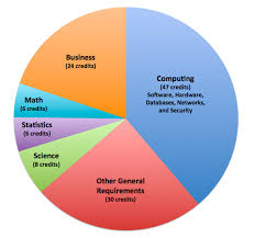 Pie Chart Of College Majors B S Computer Information Systems College Of Engineering