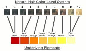 Orange Hair Colour Chart Chart Of Underlying Pigments