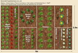 veg garden layout template page 1