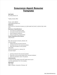 Insurance Agent Job Description Resume Template Sample