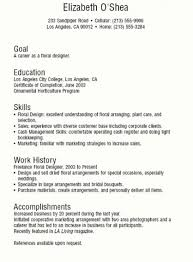 Teen Resumes 5 Examples Of Teen Resumes No Work Experience Resume Template  Examples To Inspire