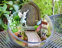 gorgeous fairy garden terrarium kits