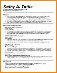 Profile Example Resume Professional Profile Resume Examples Marketing